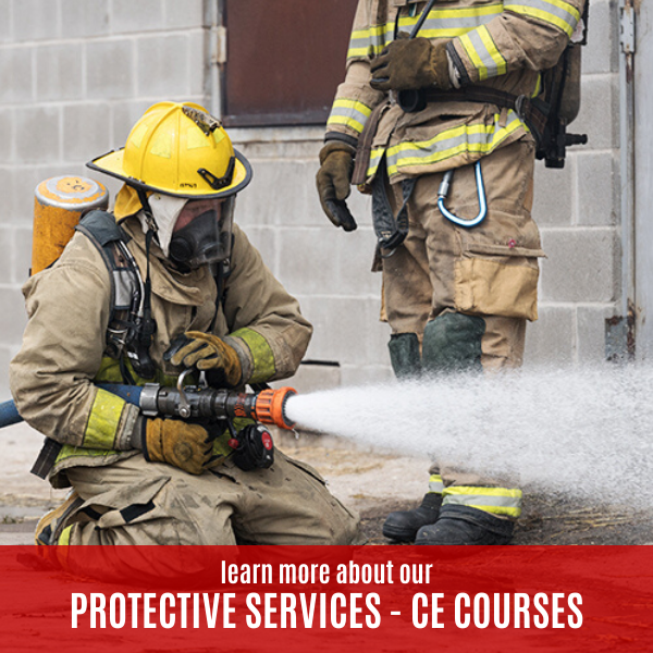 CE Protective Services Program image